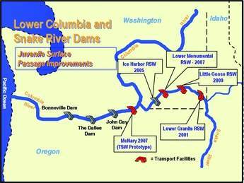 Lower Columbia and Snake River dams