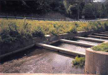 Cupsaw_20Spillway_20Before