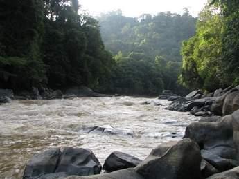 Sarawak_projects