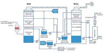 ecot_fig2