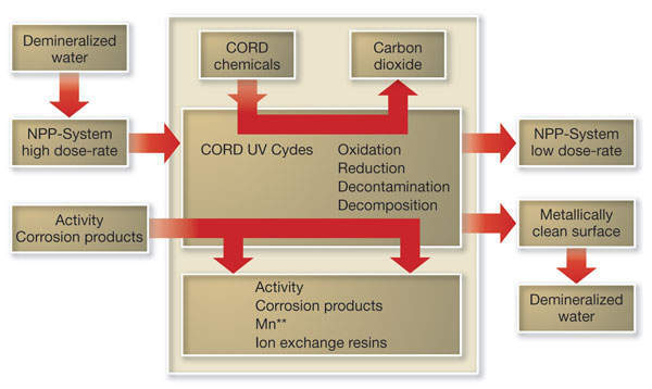 Logistics of the HP CORD UV process
