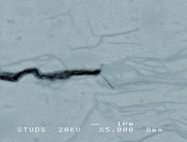 Figure 8: BEI oxide contrast