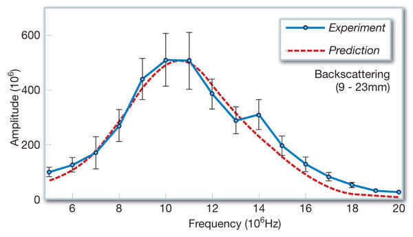 Figure 4: Comparison of predicted and experimentally-obtained spectra of backscattering echo of the unirradiated archive material in a depth region of 9-23mm from the surface