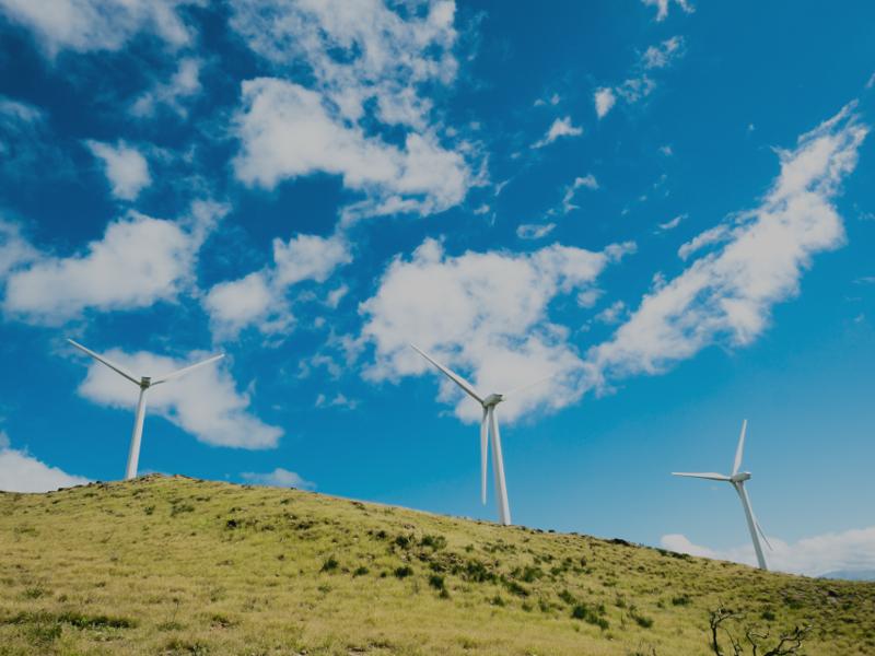 Image 2- Rio Bravo Wind Project, Starr County, Texas
