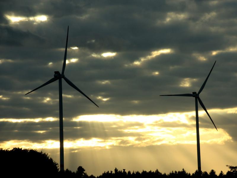 Image 3- Rio Bravo Wind Project, Starr County, Texas