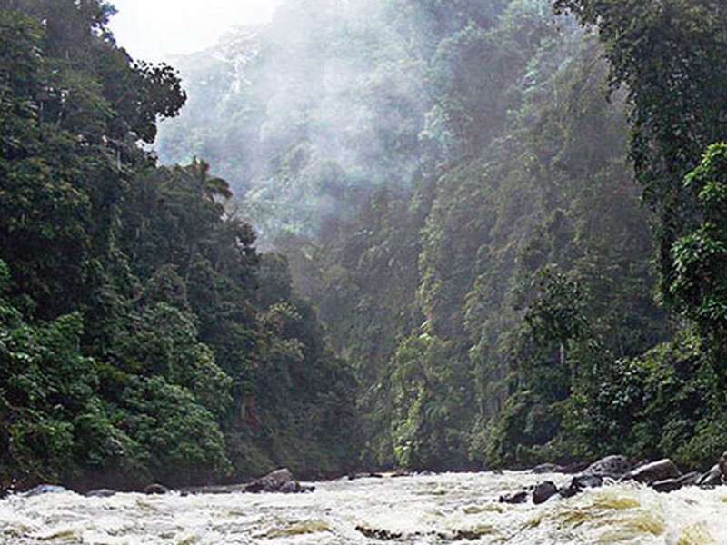 Batangtoru Hydropower Project