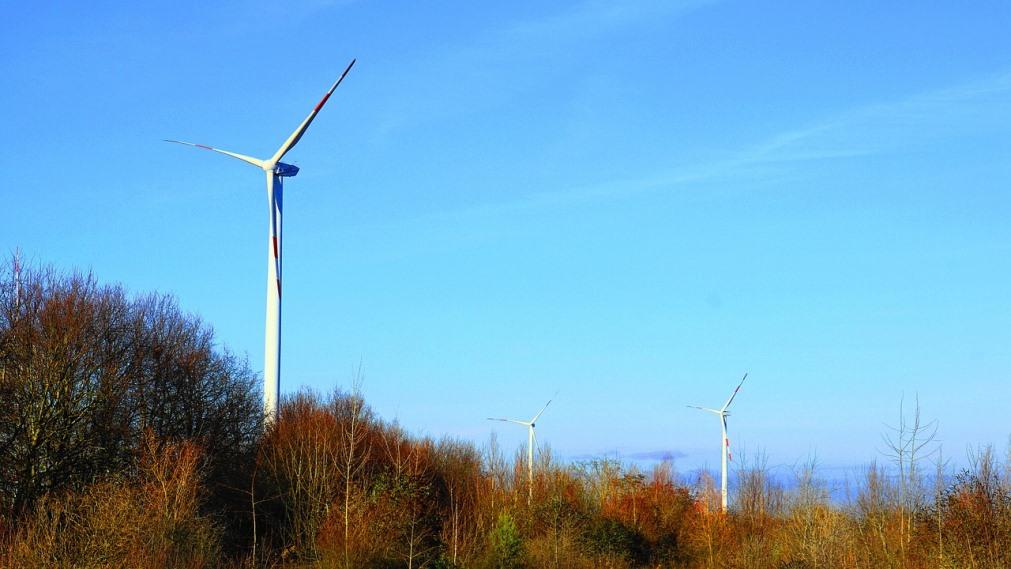 Akuo Energy inaugurates 50MW PECASA wind farm in Dominican Republic