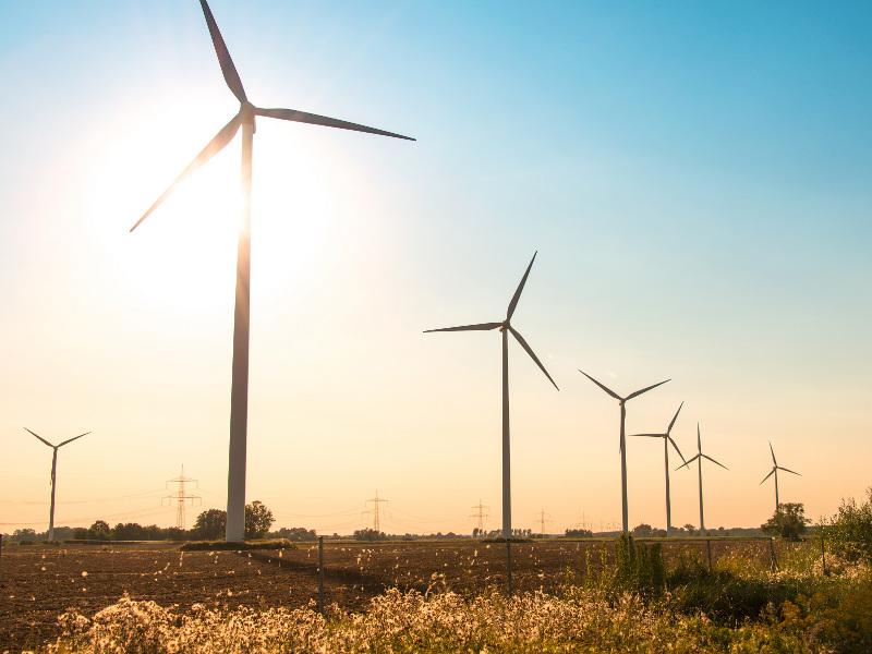 1l-Image---El Campo Wind Farm