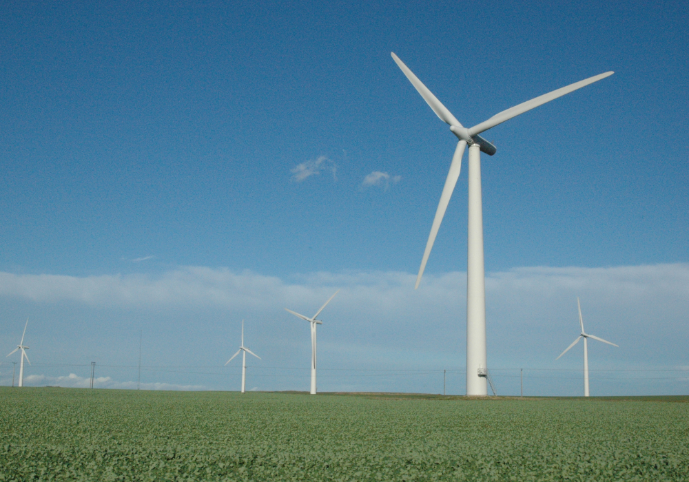 Ripple Energy wind farm plan