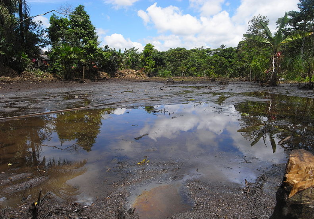 Indigenous leaders call for an end to new Amazon oil drilling and mining