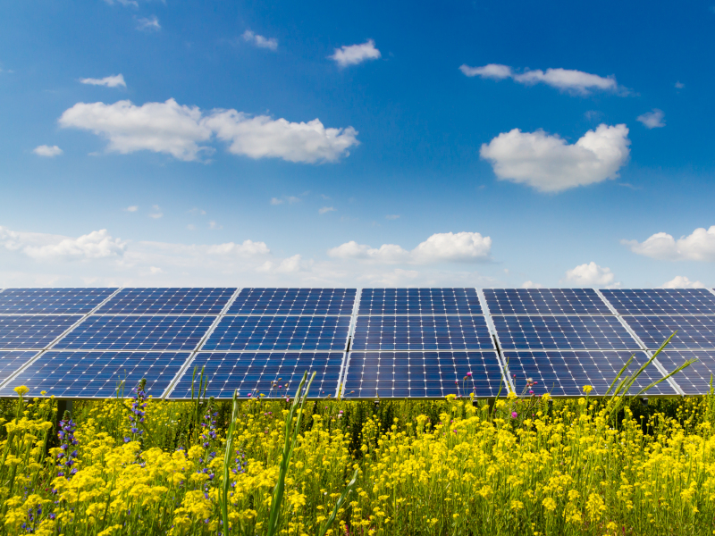 Image 2- Pinnapuram Integrated Renewable Energy and Storage Project