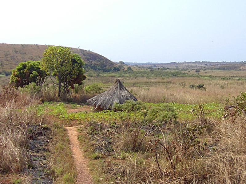 Minim Martap Bauxite Project, Cameroon