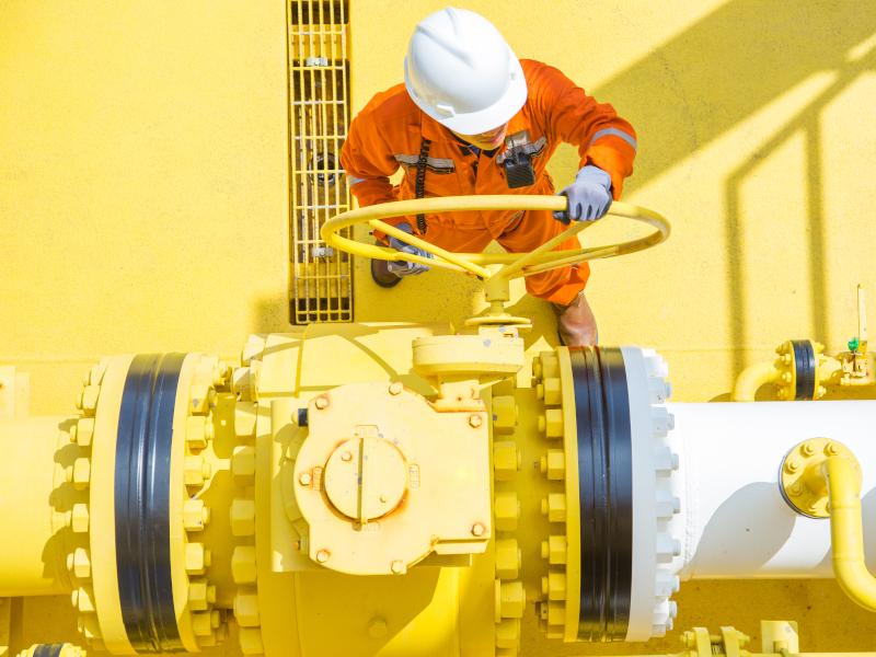 Image 3- Whale oil field.jpeg