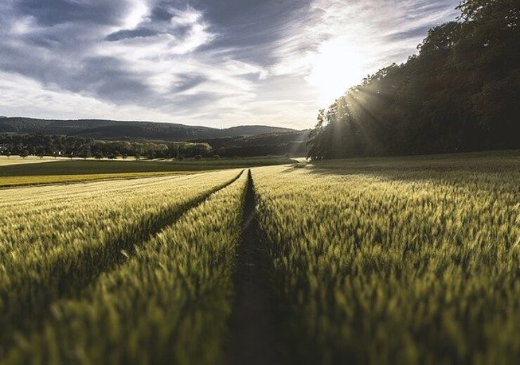 Department of Energy to provide $68 million for bioenergy crop research