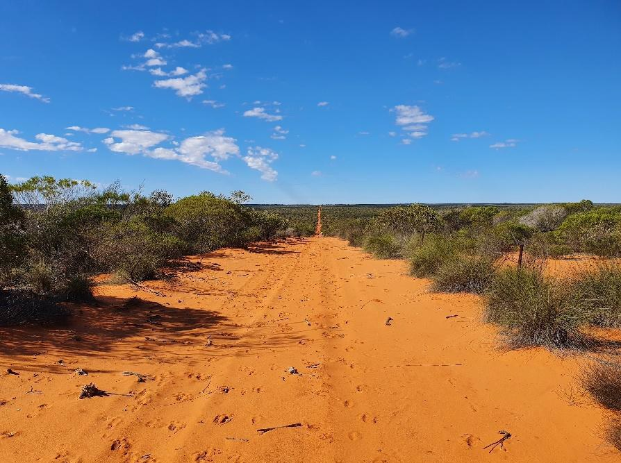 Macmahon secures contract for Coburn mineral sands project in WA