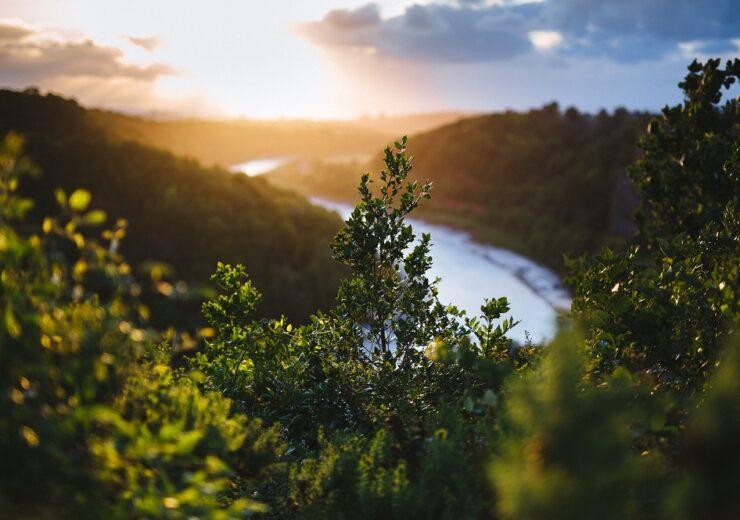 miljo_vann-busker-sol-lavoppl