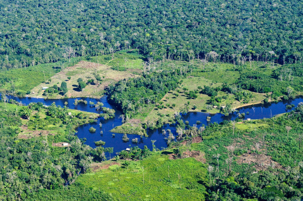 Mining Amazon Indigenous lands