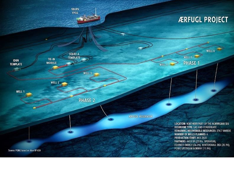 Aerfugl Gas and Condensate Field