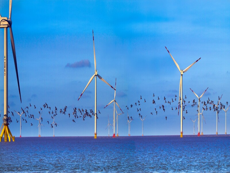 Image 3-Jiangsu Rudong (H6, H10) Offshore Wind Power Project_China