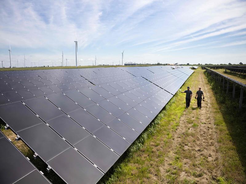 Image 3-Samson Solar Energy Center