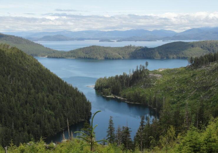 Sealaska-4-forest-Alaska--1024x768