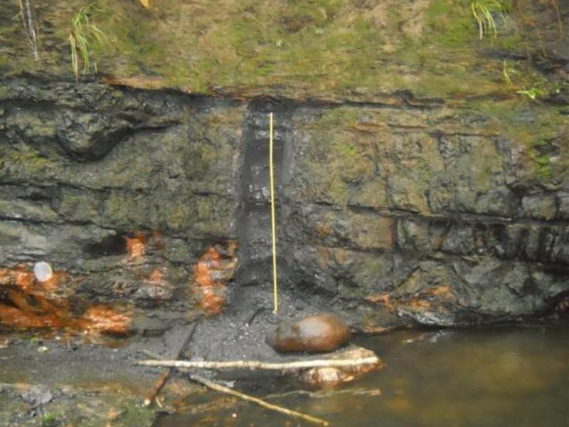 Image 2-Bumi Barito Mineral Coking Coal Mining Project