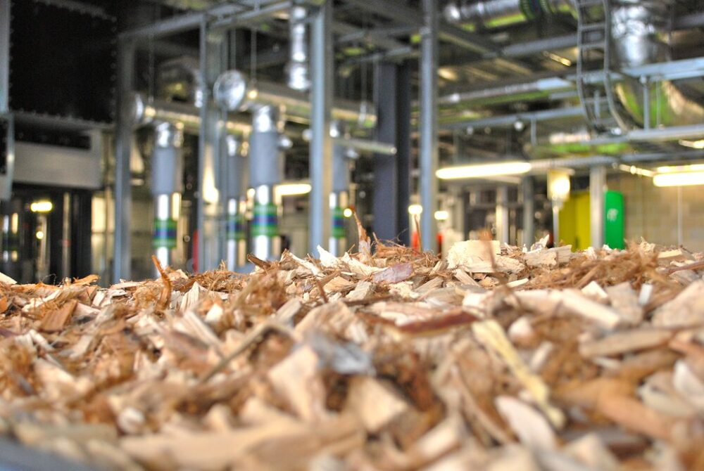 Biomass developments